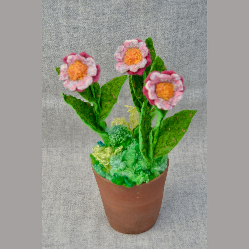 Daisy Pots (pink & orange flowers)
