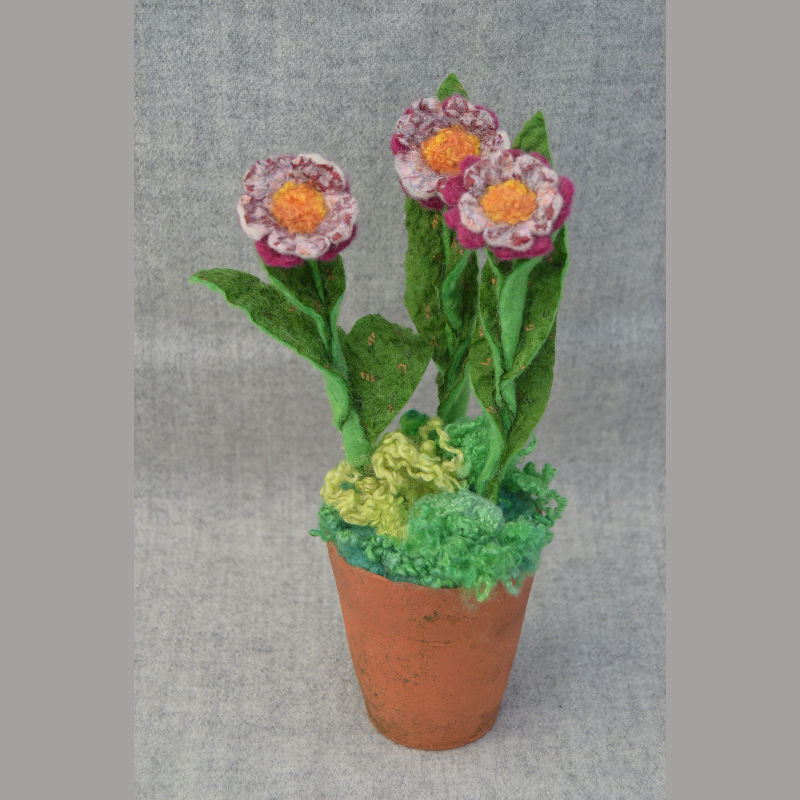 Daisy Pots (pink & yellow flowers)
